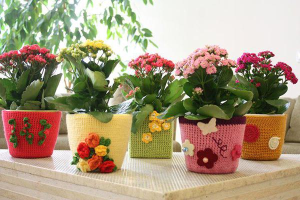Как цветы для дома своими руками 179