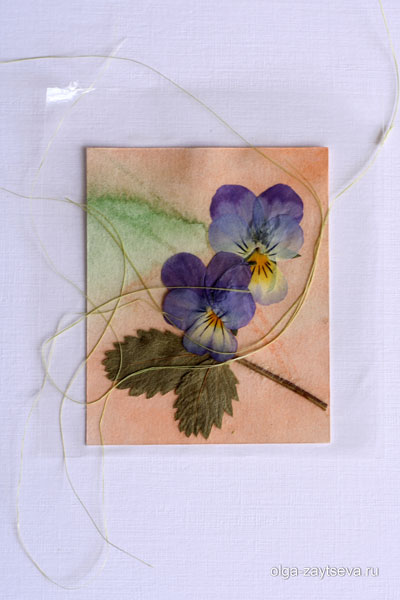 лучший способ сохранения высушенных цветов