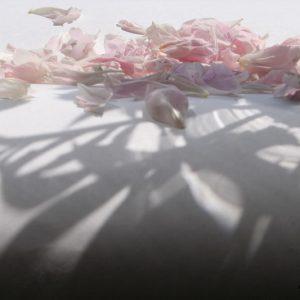 Лёд и Цветы (3)